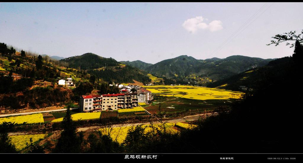 农村房屋山水风景