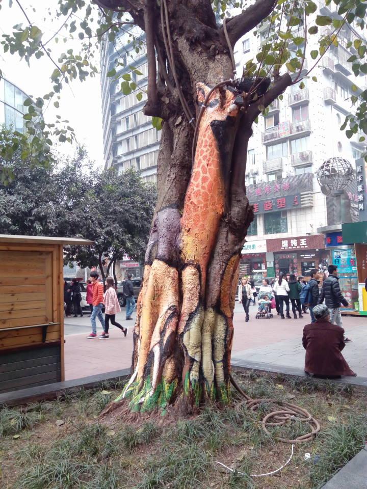 重庆杨家坪步行特色街景照片