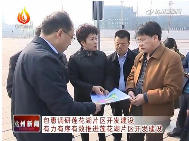 包惠调研莲花湖片区开发建设