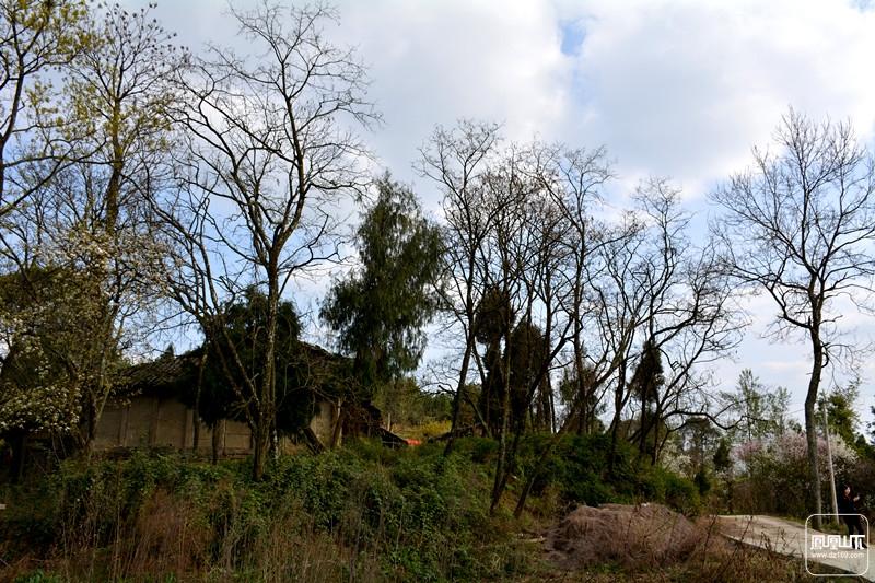施工中的金石云顶动物园