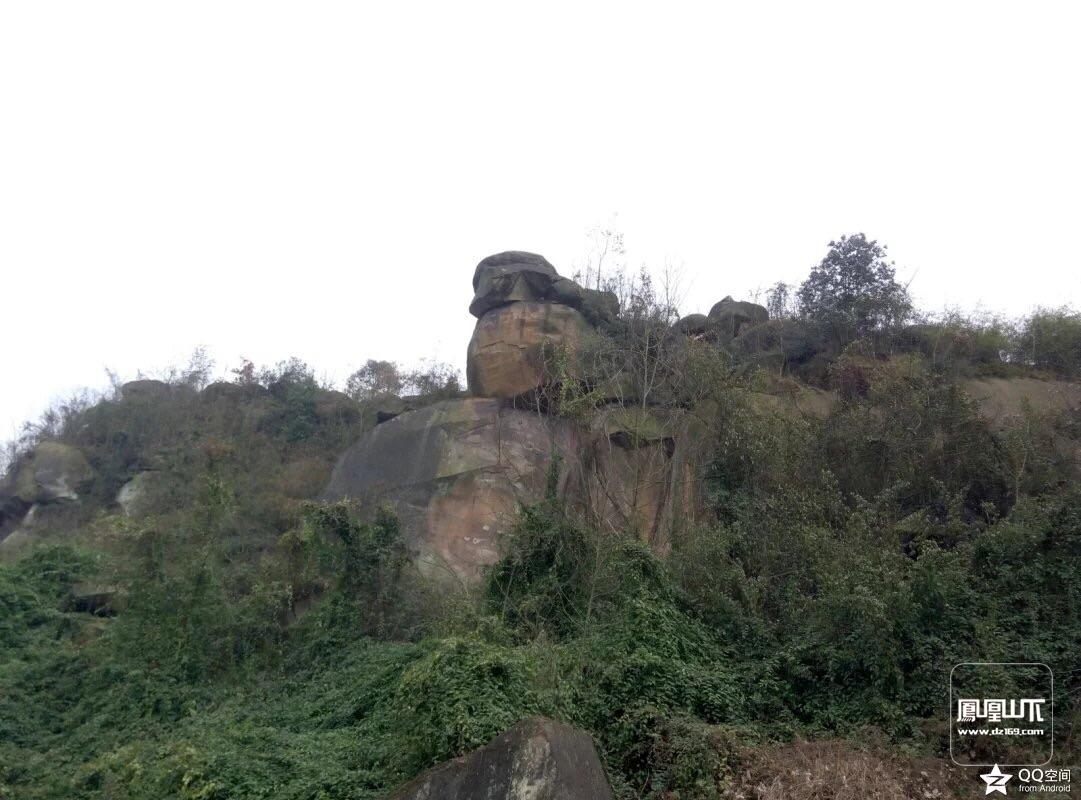 这个石头像什么,地点金垭镇牛儿捱风景区.
