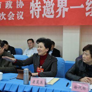康莲英参加社会科学界及特邀界一组小组讨论