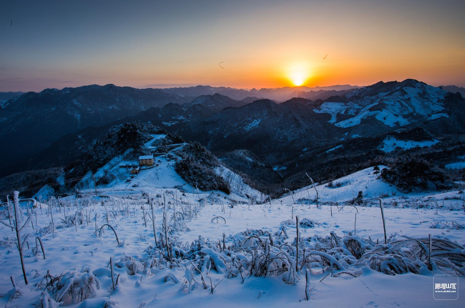 《冬韵》,郑岭栩摄.jpg