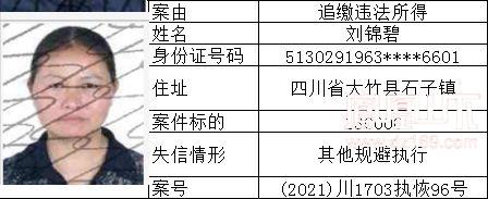 失信人 (126).jpg