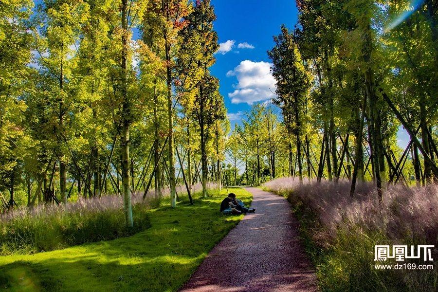 莲花湖的美还需要带着素质欣赏,不然就是玷污圣洁!