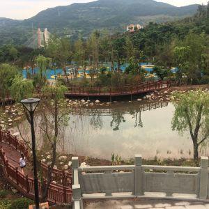 大寨子公园全面建成开放,千亩美景迷人眼