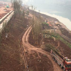 金南大桥下滨河公园正在加紧打造