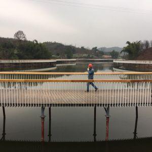 莲花湖公园二期示范段打造结束 春节前向游客开放