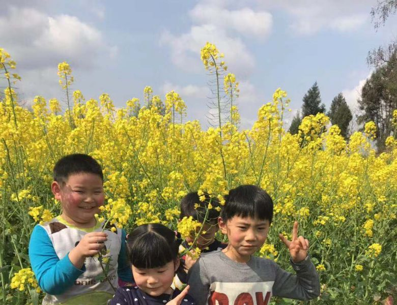 【研学之旅】亲近自然 触摸春天     --通川区三小一年级二班